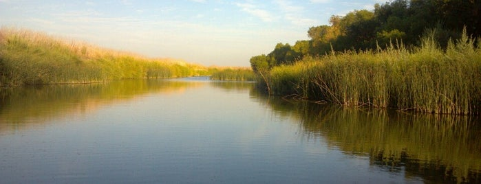 San Luis National Wildlife Refuge is one of National Recreation Areas.