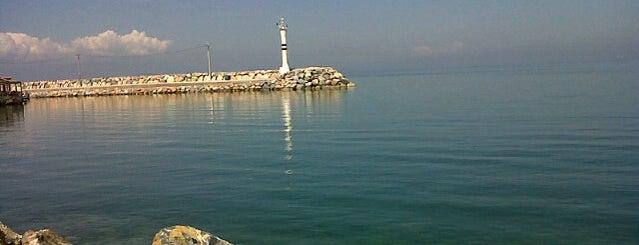 Güzelbahçe Limanı is one of Locais curtidos por Gülşah.