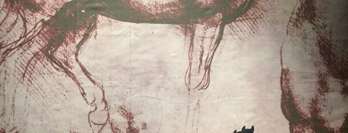 Exposição Leonardo da Vinci - 500 Anos de um Gênio is one of Tempat yang Disukai Cris.