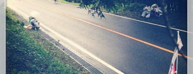 Utsunomiya City Forest Park is one of サイクリング大好き♥.