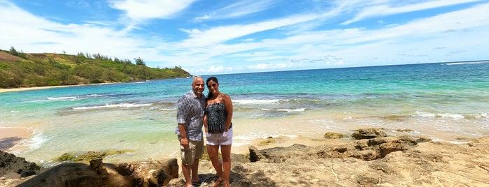 Moloa'a Beach is one of Kauai.
