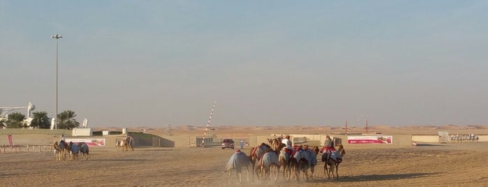 Camel Race Track is one of 2016 - DXB.