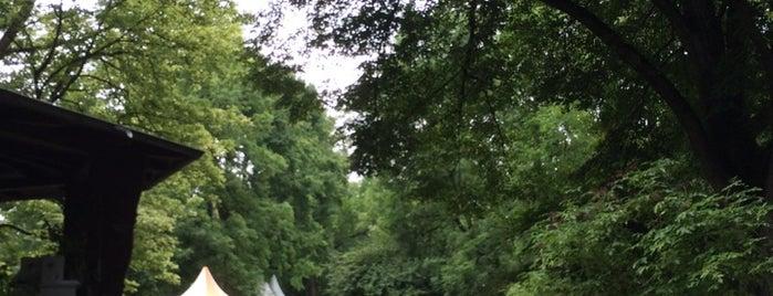 Stadtpark Reutlingen is one of Germany Summer 2013.