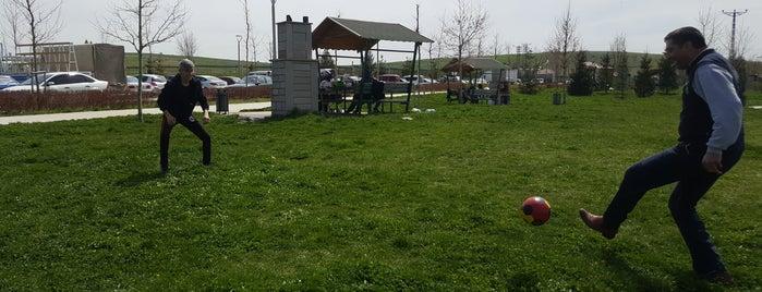 Peçenek Piknik ve Mesire Alanı is one of Ankara Mesire Alanları.