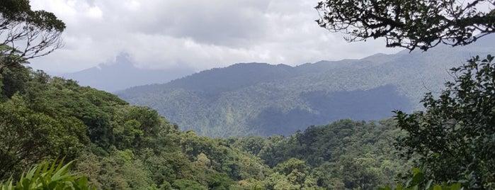 Reserva Bosque Nuboso Santa Elena is one of erykaceaさんの保存済みスポット.