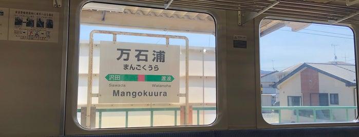 Mangokuura Station is one of JR 미나미토호쿠지방역 (JR 南東北地方の駅).