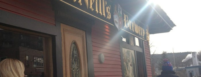McNeill's Brewery is one of My must visit brewery list.