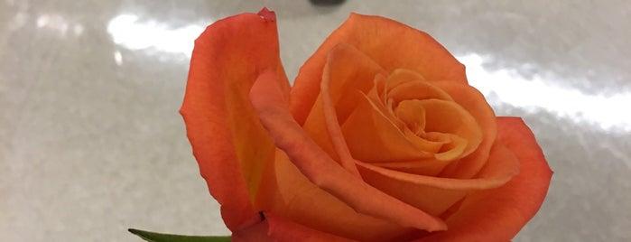 Wegmans Floral is one of Lugares favoritos de Christina.