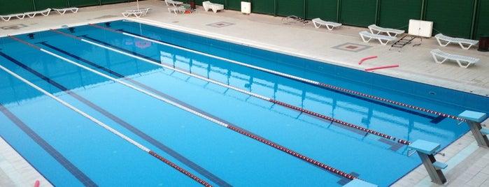 Atıcılar Yarı Olimpik Yüzme Havuzu is one of Ibrahim : понравившиеся места.