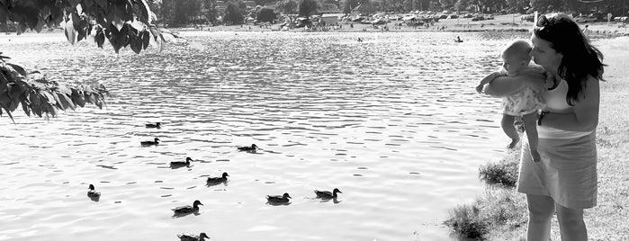 Vinianske jazero is one of Locais curtidos por Greta.