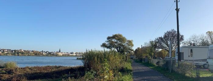 Yachthafen Hersel is one of Meine Lieblingsorte.
