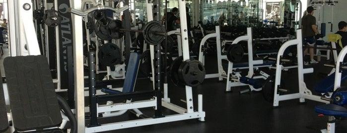 Classic AM Gym is one of สถานที่ที่ Alvaro ถูกใจ.