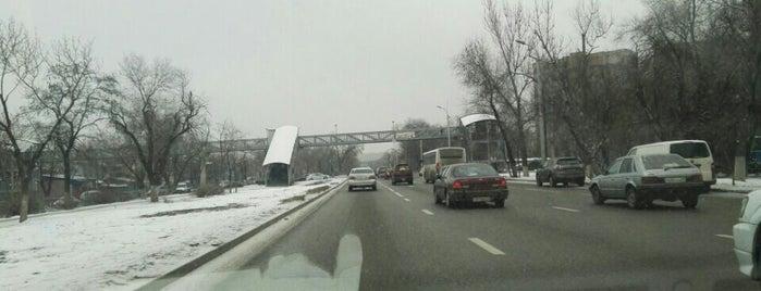 Райымбек даңғ. / Raiymbek Ave. / просп. Райымбека is one of Улицы Алматы.