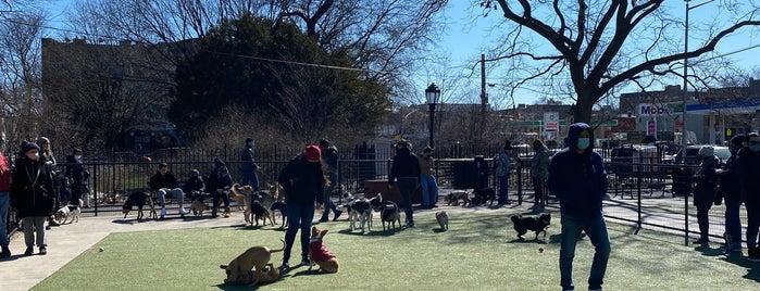 Kensington Dog Run is one of Prospect Park.