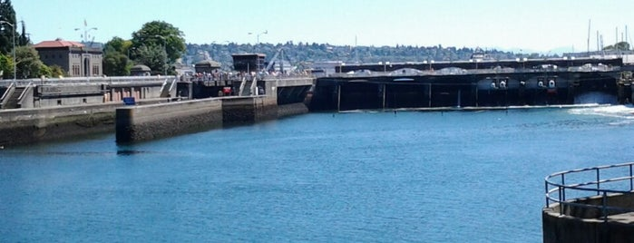 Ballard Locks Visitor Center is one of Seattle Interns: Places.