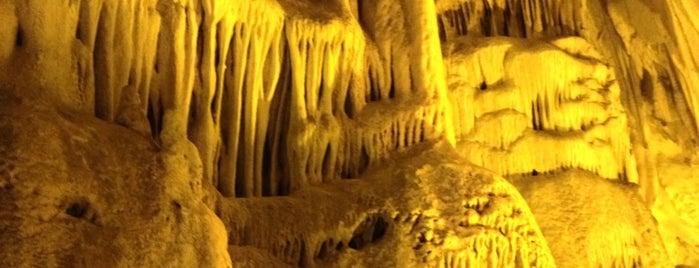Dupnisa Mağarası is one of İğneada.