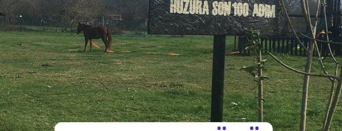 Baraka Köyü is one of Buse'nin Beğendiği Mekanlar.