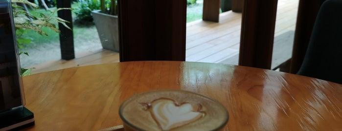 Buna Organic Coffee is one of 04 - ตามรอย.