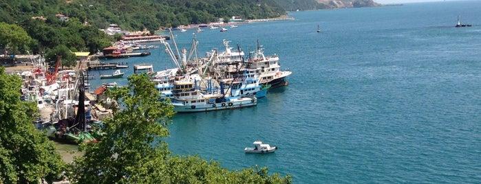 Rumeli Kavağı Iskelesi is one of Lugares favoritos de MeSuT.