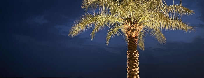 Lakes Park متنزه البحيرات is one of Riyadh.
