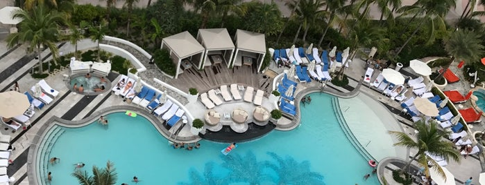 Loews Miami Beach Hotel is one of 50 Best Swimming Pools in the World.