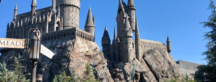 Harry Potter and the Forbidden Journey is one of Tempat yang Disukai Cristina.