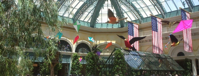 Bellagio Conservatory & Botanical Gardens is one of Lugares guardados de Priscila.