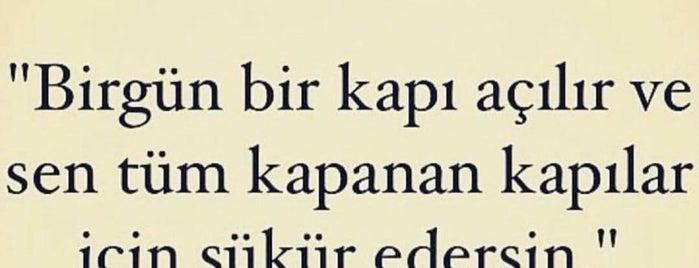 Koton is one of Gülder'in Beğendiği Mekanlar.