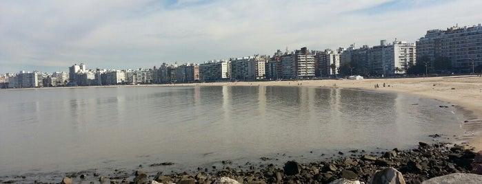 Playa de los Pocitos is one of Montevideo.