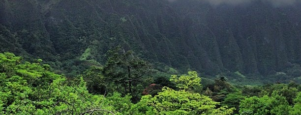 Ho'omaluhia Botanical Garden is one of Onolicious Oahu.
