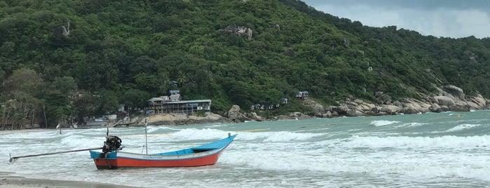 Haad Rin Beach is one of Locais curtidos por Tanya.