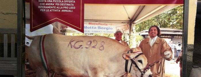 Ristorante Macelleria Motta is one of Milano.