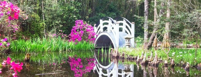 Magnolia Plantation & Gardens is one of Charleston.