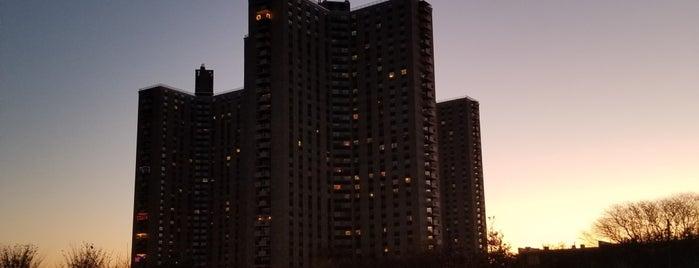 Co-op City is one of Tempat yang Disukai 🖤💀🖤 LiivingD3adGirl.