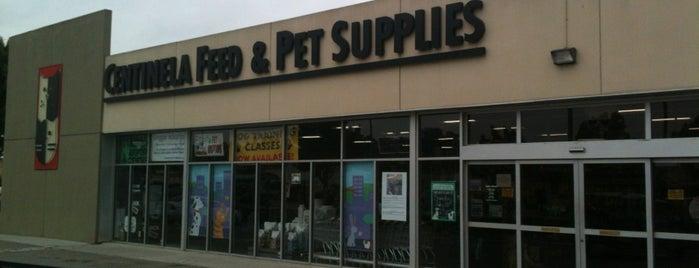Centinela Feed & Pet Supply is one of Lauren : понравившиеся места.