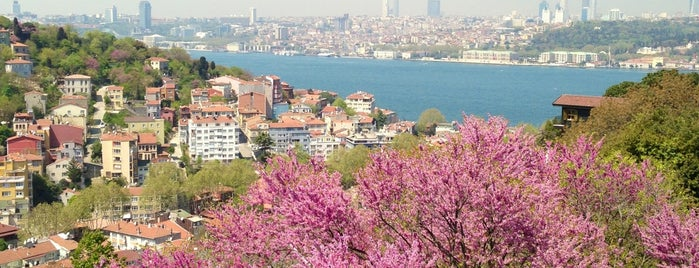 Yeditepe Cafe is one of Istanbul.