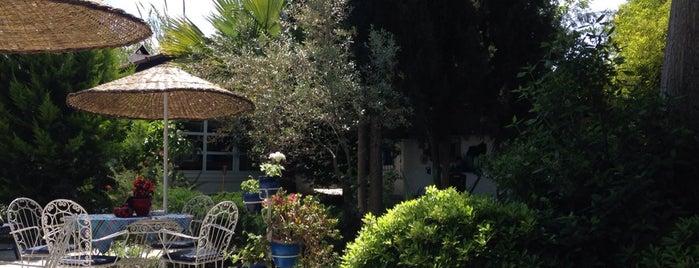 Bakkhos Guesthouse is one of Küçük ve Butik Oteller Türkiye.