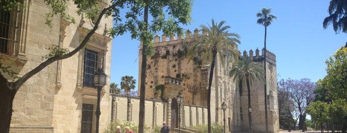 Alcázar de Jerez is one of Jerez & around.