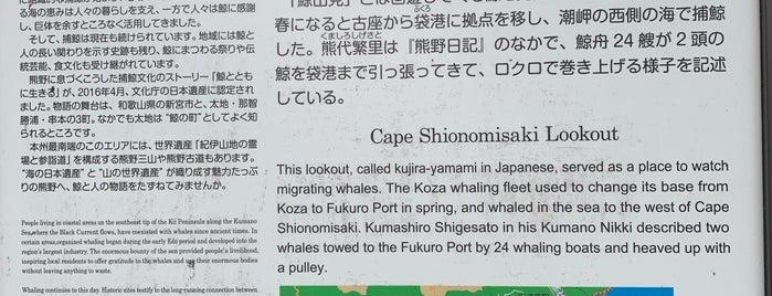 潮岬の鯨山見 is one of Shigeoさんのお気に入りスポット.