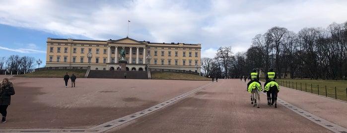 Norwegian Royal Palace is one of Orte, die Eda gefallen.