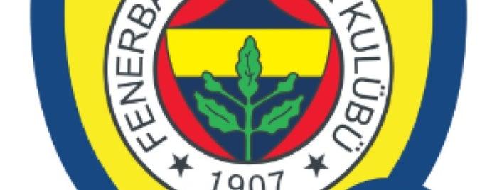 Basın Tribünü is one of Fenerbahçe SK Badge.
