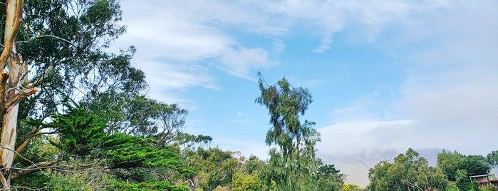Pichidangui is one of Tempat yang Disukai Sixta.