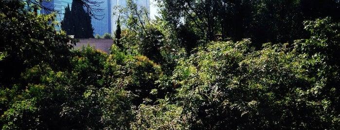 Notaría 233 de la ciudad de México is one of สถานที่ที่ Bardo H. ถูกใจ.