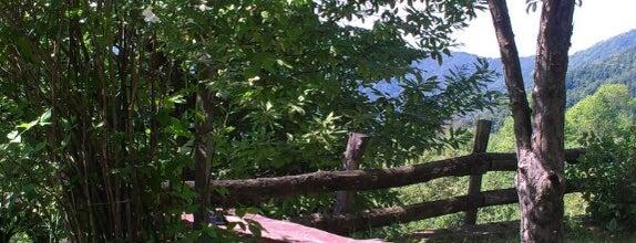 Doğançay is one of Sakaryanın Kıyısı Köşesi.
