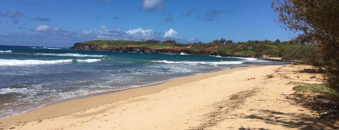 Gillin's Beach is one of Kauai.