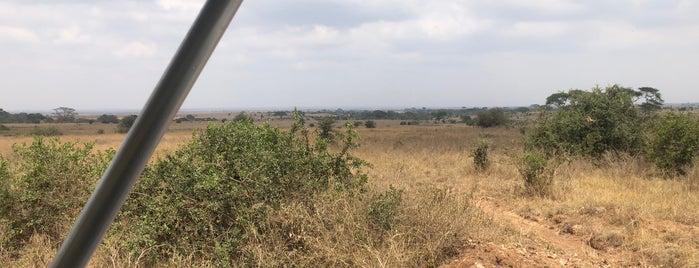 Nairobi National Park is one of Nairobi.