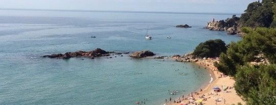 Platja de Santa Cristina is one of Playas de España: Cataluña.