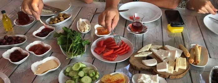 Ser Zeytinyağı&Köy Kahvaltısı is one of Locais curtidos por Perihan.