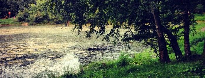 Лианозовский пруд is one of Orte, die Tani gefallen.