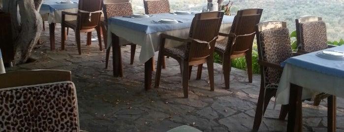 Sahin Tepesi Restoran is one of Locais curtidos por Mine.